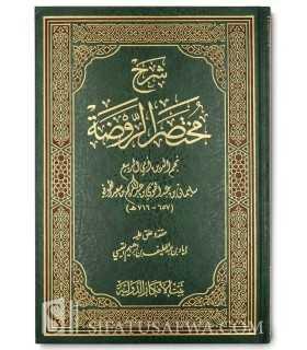 Sharh Mukhtasar ar-Rawdah (al-Bulbul) - At-Toofee شرح مختصر الروضة - الطوفي