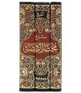 Charh Mukhtasar ar-Rawdah (al-Bulbul) - At-Toufi