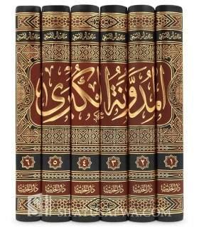 Al-Moudawanah fi Fourou' al-Malikiyah - Sahnoun المدونة والمختلطة في فروع المالكية لسحنون