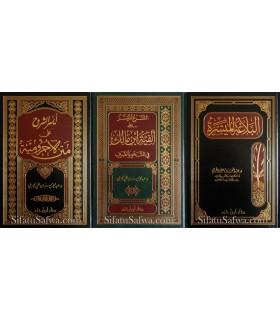 L'Arabe Simplifié : Pack de 3 explications (Ajrumiya, Alfiat, Balagha)